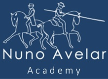 Nuno Avelar Academy
